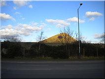 SP3492 : Mount Judd, Nuneaton by Richard Vince