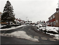 ST3090 : A wintry view of The Spinney, Malpas, Newport by Jaggery