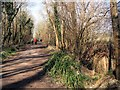 TQ1625 : Downs Link path near Southwater by Paul Gillett