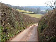 SX8979 : Lane to Higher Dunscombe by Derek Harper