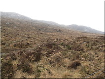 J2024 : The rugged slopes of Wee Roosley from the B25 by Eric Jones