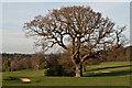 TQ4462 : High Elms Golf Course by Ian Capper