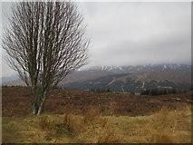 NH1804 : Moorland near Loch Loyne by Jennifer Jones