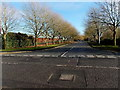 ST3386 : Tree-lined road to Newport International Sports Village by Jaggery