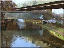 TQ0562 : Bridges over the River Wey Navigation by Alan Hunt