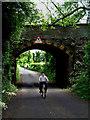 J1485 : Kirby's Lane, Antrim by Robert Ashby