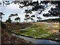 NT6378 : East Lothian Landscape : The Lower Bends On The Hedderwick Burn by Richard West