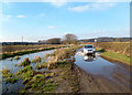 SU5471 : River Pang above Bucklebury Ford by Des Blenkinsopp