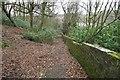 SD7212 : Footpath near The Oaks by Philip Platt