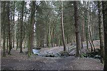 SE1940 : Spring Wood, Guiseley by Richard Kay