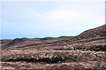 NR6007 : Moorland near Torr Mor by Steven Brown