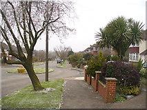 TQ2262 : Ewell - Seymour Avenue by Colin Smith