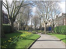 TQ3581 : The Southern half of Stepney Green Gardens, East London by Derek Voller