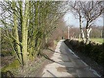 SE0721 : Dog Lane, Greetland by Humphrey Bolton