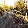 ST3386 : Blocked off Traston Road, Newport by Jaggery