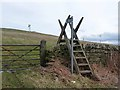 NZ1446 : Ladder stile and mobile phone mast on Humber Hill by Oliver Dixon