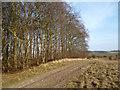 SU3283 : Long (gone) Barrow by Des Blenkinsopp