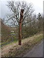 NZ1647 : Carved pole by the Lanchester Valley Railway Path by Oliver Dixon