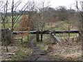 NZ1746 : Pipeline alongside the Lanchester Valley Railway Path by Oliver Dixon