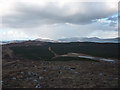 NM4754 : Forestry on Criadhach Mhor by Karl and Ali
