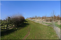 SK2022 : Footpath north-west from Tatenhill by Tim Heaton