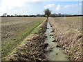 TM3397 : Drainage ditch separating fields between Mundham and Seething by Evelyn Simak