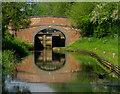 SP4642 : Hardwick Lock Field Bridge No 160 by Gillie Rhodes