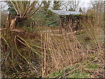 TL0536 : Dilapidated shed on Flitton Moor by Michael Trolove