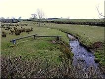 H4668 : A small stream, Drumragh by Kenneth  Allen