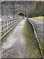SK1199 : Platform at Woodhead Station by Dave Pickersgill
