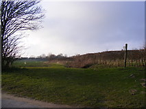 TM4069 : Footpath to the A12 Main Road by Adrian Cable