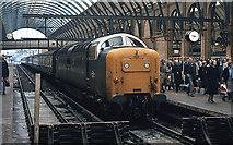 TQ3083 : Deltic at Platform 5 - King's Cross by The Carlisle Kid