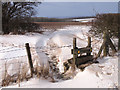 SE9431 : A Stile in the Snow by Andy Beecroft