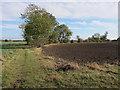 TL3872 : Bridleway to West Fen Road by Hugh Venables