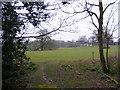 TM4169 : Footpath to Westleton Road by Geographer