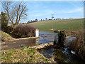 SU3976 : The Shefford Stream at Northfield Farm by Des Blenkinsopp
