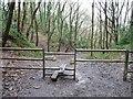 ST6371 : Public footpath through former quarry by Christine Johnstone