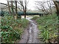 ST6371 : Sewage pipe in the Avon Valley by Christine Johnstone