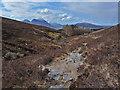 NG5637 : Path south from Dun Caan by John Allan