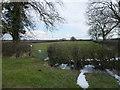 TF1021 : The Whitebread Meadow by Bob Harvey