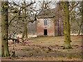 SJ7387 : Dunham Massey Deer Park, Slaughterhouse by David Dixon