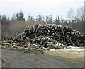 NT4726 : A pile of logs by James Denham