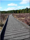 NS6351 : Boardwalk at the Langland Moss Nature Reserve by Gordon Brown