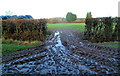 ST6590 : A muddy field entrance, Woodbine Farm east of Thornbury by Jaggery