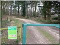 SU0406 : Forestry Commission Track by Nigel Mykura