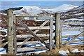 NT1239 : Gate on the John Buchan Way by Jim Barton