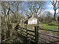 SJ0978 : Ruin by the Clwydian Way by Maggie Cox