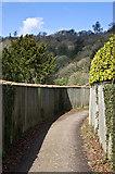 TQ2652 : Bridleway below Reigate Hill by Ian Capper