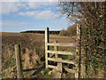 SJ0977 : Stile on the Clwydian Way by Maggie Cox