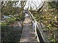 SJ0978 : Board walk on the Clwydian Way by Maggie Cox
